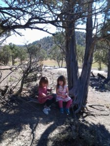 Our three year old granddaughters found the perfect place to take a rest while on a walk with grandma.
