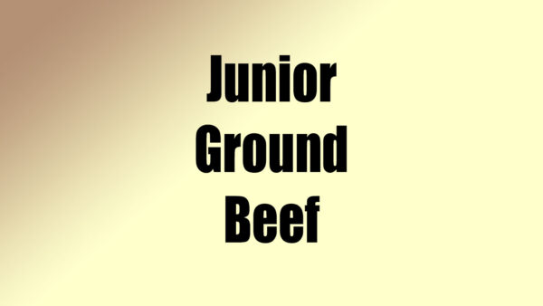 Junior Ground Beef